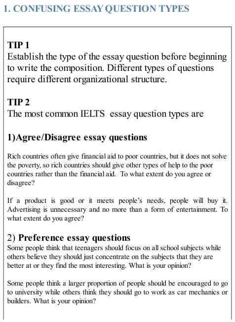 Most essays focus on